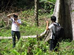 Foto dengan durian jatuhan