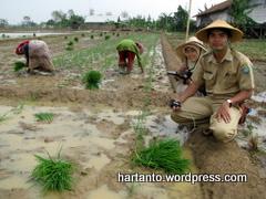 Indramayu 2008