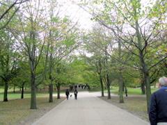 Taman di sekitar ROG yang menyenangkan bagi pejalan kaki.