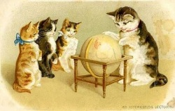 Read my blog n follow my journey, just click here : )