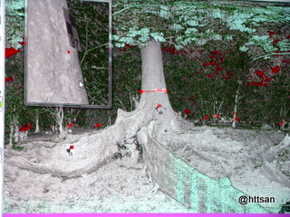 Menghitung diameter batang pohon.