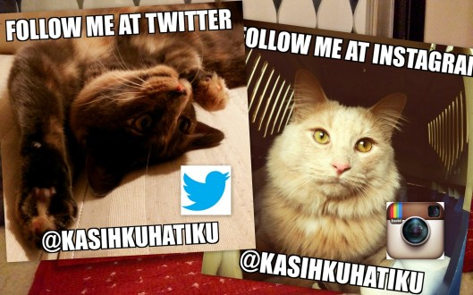 Follow @KasihkuHatiku