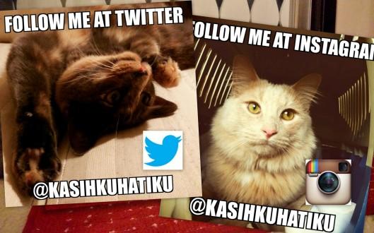Follow @KasihkuHatiku